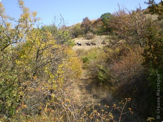 Осень, осень... фото 7