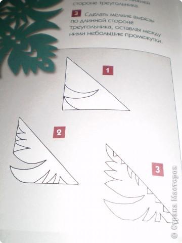 Квадрат фото 1