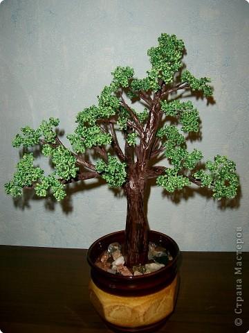 Бисероплетение: Бисерное дерево