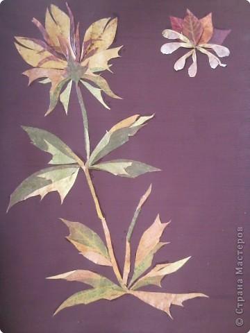 Аппликация: Картина из осенних листочков