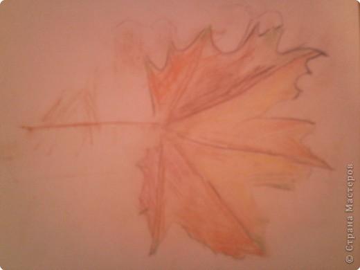 Осенние листочки фото 3