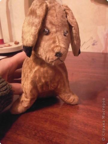 Это моя любимая собачка Муля. Ей уже больше 50 лет. Её шерстка выцвела и стала бежевой, хвостик разорвался потому что ткань износилась Теперь вот думаю как ее отремонтировать.