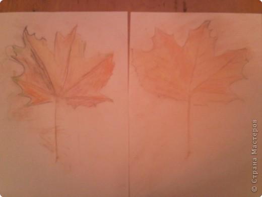 Осенние листочки фото 2
