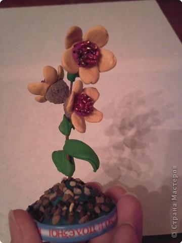 Цветок из чашечек и веточки дуба, пластилина, бисера. Закреплено на крышечке от сока, заполненной пластилином и маленькими камешками. фото 1