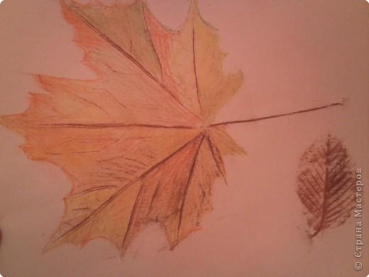 Осенние листочки фото 1