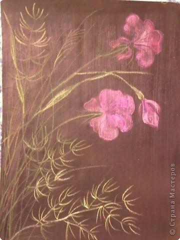 Рисование и живопись: Цветы. фото 1