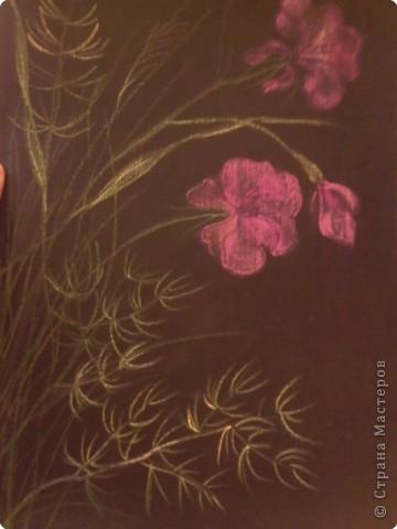 Рисование и живопись: Цветы. фото 2
