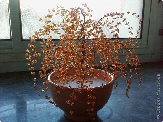 Яркое, оранженое дерево