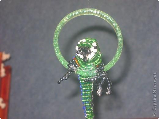 зеленый попугай Бисер фото