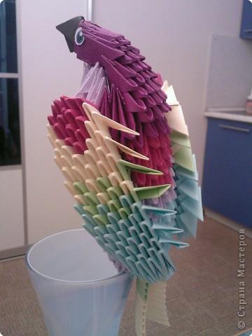 Оригами модульное: Попугайчик
