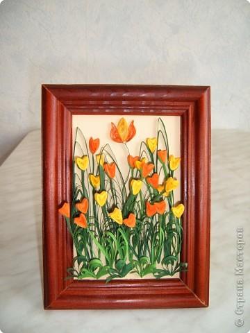 Тюльпаны.   Моя самая первая работа, которую делала на курсах по квиллингу в Студии Бумажного Творчества в Санкт-Петербурге фото 1