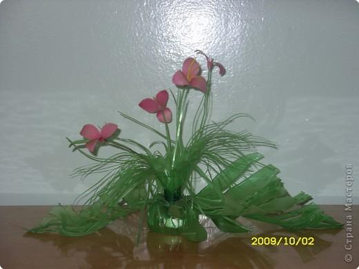 цветы  Новоселова Маша 2 класс фото 1