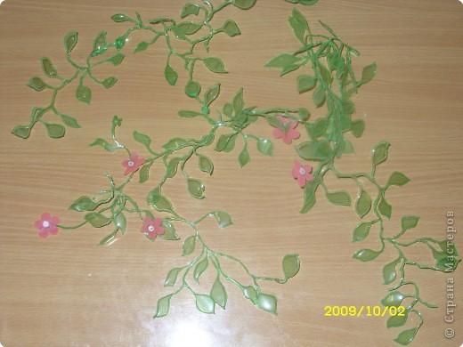 цветы  Новоселова Маша 2 класс фото 2