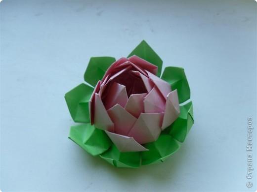 Оригами: Цветок лотоса фото 2