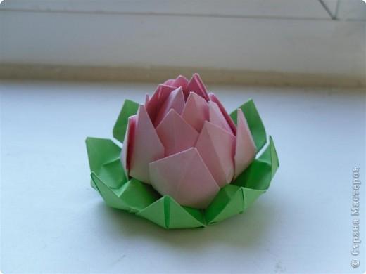 Оригами: Цветок лотоса фото 1