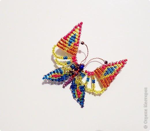 Бабочка крупным планом:)) фото 1