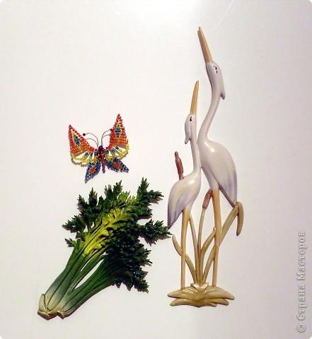 Бабочка крупным планом:)) фото 2