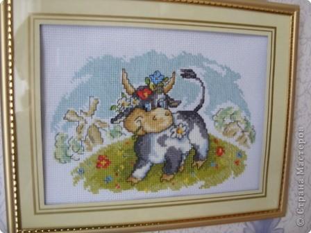 Коровка фото 1