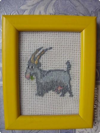 Коровка фото 3