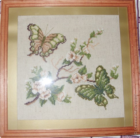 Вышивка: бабочки