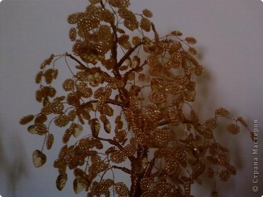 Осеннее дерево с сердечками фото 2