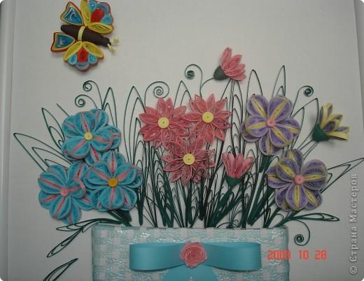 Квиллинг: Мои цветочки фото 2