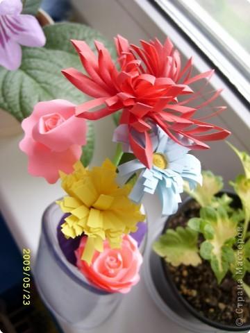 Желтая роза фото 7