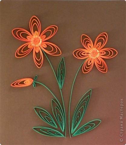 Квиллинг: Трехцветные цветы. фото 1
