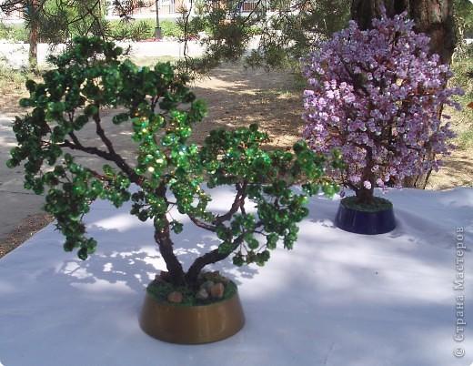 Веточки для этих деревьев делали мои приятельницы, а я собирала из них деревца.