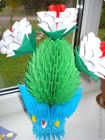 Вот и у нас на окошке расцвел кактус фото 1