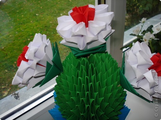 Вот и у нас на окошке расцвел кактус фото 2
