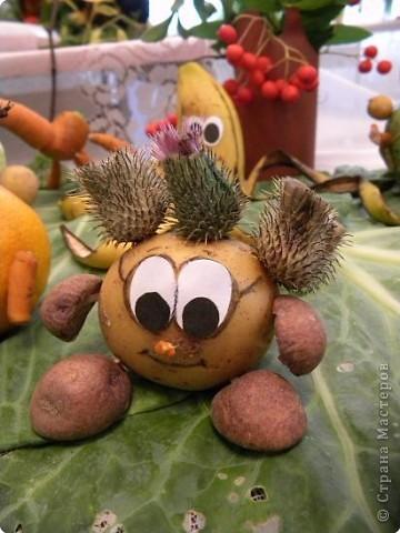 25 августа 2009года в библиотеке проводилась традиционная выставка плодов и цветов. Меня привлекла своей простотой и очаровательностью работа Сидоровой Т.В. фото 4