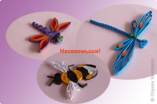 Просторы для квилинга широкие! Пробовала делать насекомых, брала  образец  ( сайт- Поделки с Инной)