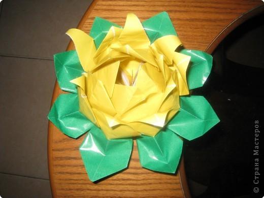 Оригами модульное: кувшинка фото 1