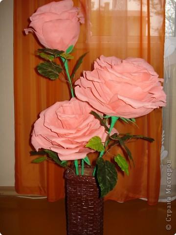 Увидела в инете такие большие розы,попробовала сделать фото 1