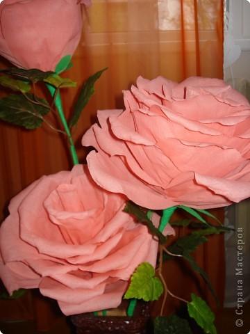 Увидела в инете такие большие розы,попробовала сделать фото 4