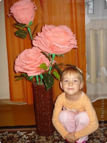 Увидела в инете такие большие розы,попробовала сделать фото 6