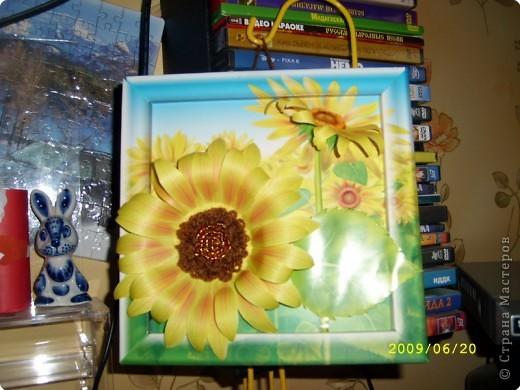 Желтая роза фото 5