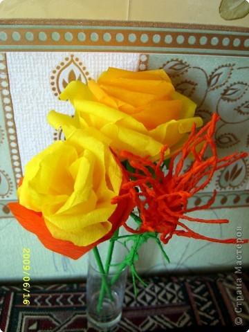 Желтая роза фото 4