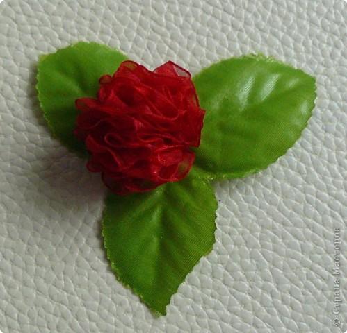 Не определена: Просто цветы своими руками фото 4