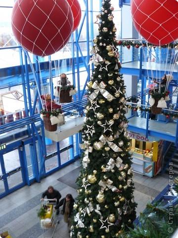 В торговых центрах устанавливают уже огромные ёлки фото 1