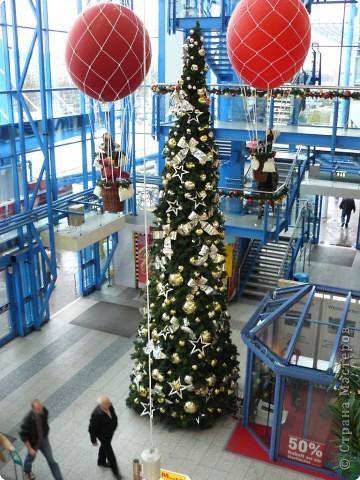 В торговых центрах устанавливают уже огромные ёлки фото 4