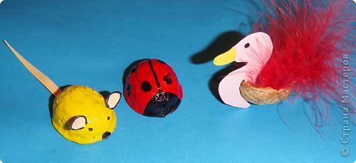 Из ореховых скорлупок можно сделать множество рпзличных поделок. Вот такие ёлочные игрушечки мы делали с ребятами.  Кроме птичек можно сделать котят, медвежат и т.д. фото 7