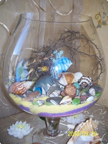 Не определена: Сухой аквариум
