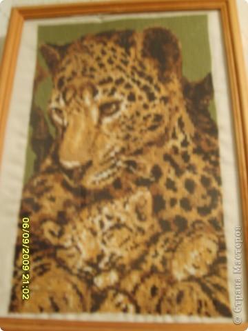 Вышивка крестом: Семья леопардов