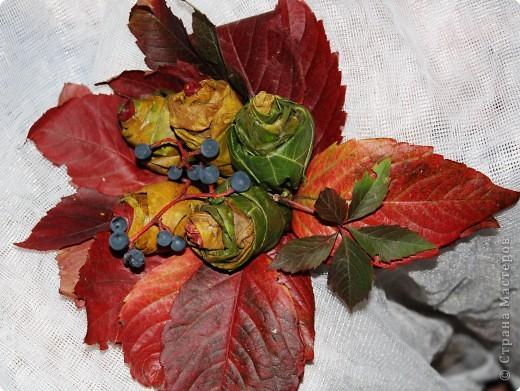 Листья грецкого ореха и дикого винограда.