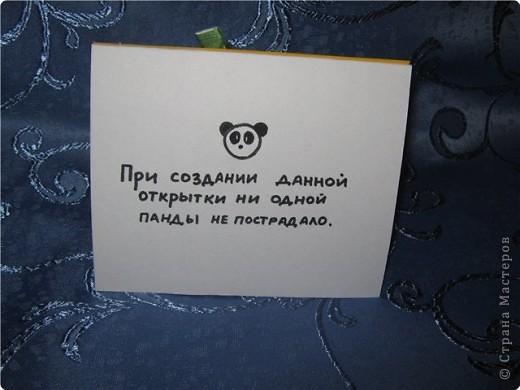 Аппликация: Панды фото 2