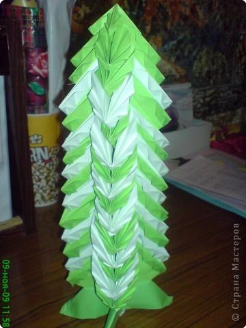 зеленая красавица