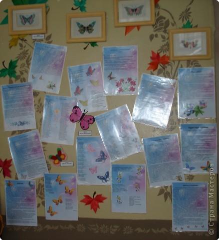 Ну вот и свершилось! За окнами - снег, а у нас в детском саду всеми цветами радуги переливаются крылья бабочек!  фото 3