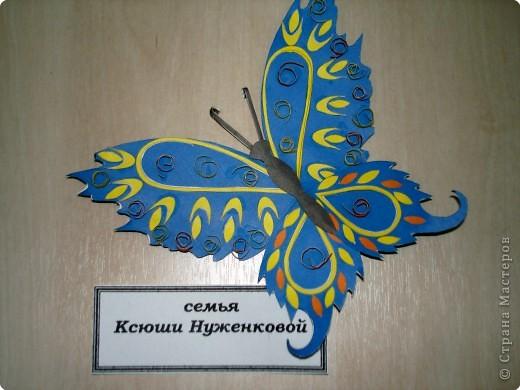 Ну вот и свершилось! За окнами - снег, а у нас в детском саду всеми цветами радуги переливаются крылья бабочек!  фото 18